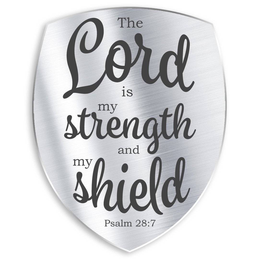 Psalm 28:7 The LORD is my Shield (Sermon)